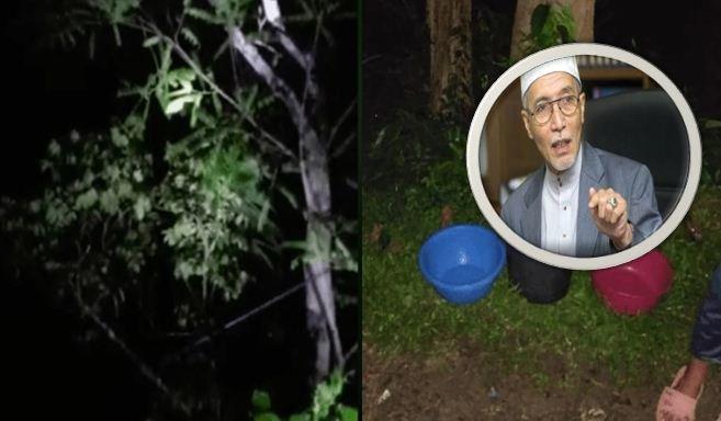 Pokok Petai Menangis. Ini Nasihat Mufti Kelantan Kepada Orang Ramai.