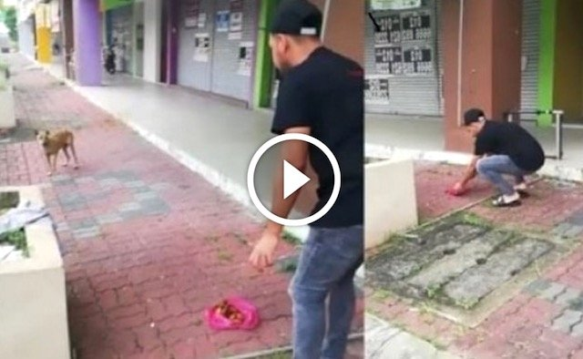 Bahasa Yg Zizan Guna Panggil Anjing Patah Kaki Datang Makan Buat Netizen Terhibur. Ada VIDEO.