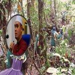 Ustaz Kongsi Doa Ringkas Elak Perkara Tak Diingini Ketika Masuk Hutan.
