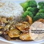 Resepi Masakan Teriyaki Chicken