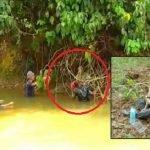 Seminggu Hilang. Gadis Ini Ditemui Bergayut Pada Akar Pokok.