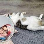 Kucing Cirit Kuning. Kakak Ni Bagi Tips Rawatan Berkesan