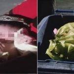 Wanita Jumpa Bayi Masih Hidup Dalam Tong Sampah