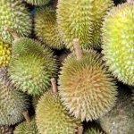 Tips Pilih Durian Supaya Tidak Menyesal