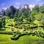 Kisah Seram di Taman Botani