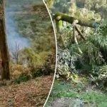 Kes Ceroboh Tanah Di Raub, Ini Tindakan Segera SPRM