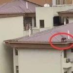 Kecut Perut Lihat Seorang Kanak-Kanak Atas Bumbung Apartmen.