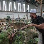 Ust Ebit Lew Sumbang 200kg Daging Segar Untuk Zoo Negara. Alhamdulillah