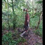 Seorang Lelaki Ditemui Tergantung Pada Dahan Pokok