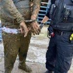 Lari Dari Polis, Pencuri Jatuh Dalam Najis Lembu
