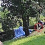 Wanita Maut Dihempap Pokok Ketika Sedang Joging.