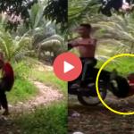 (VIDEO) Remaja 'Wheelie' Motosikal, Aniaya Warga Emas Dikecam