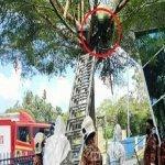 Seorang Lelaki Ditemui Meninggal Dunia Atas Pokok