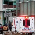 Seorang Mati Dan Lima Cedera Dalam Insiden Tikaman Di Perpustakaan Vancouver