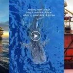 """(Video) """"Apa Yang Best Offshore?"""" Pemuda Kongsi Pengalaman Menarik Bekerja Di Offshore"""