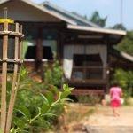 Agensi Pelancongan Dilarang Beri Perkhidmatan Balik Kampung Beraya