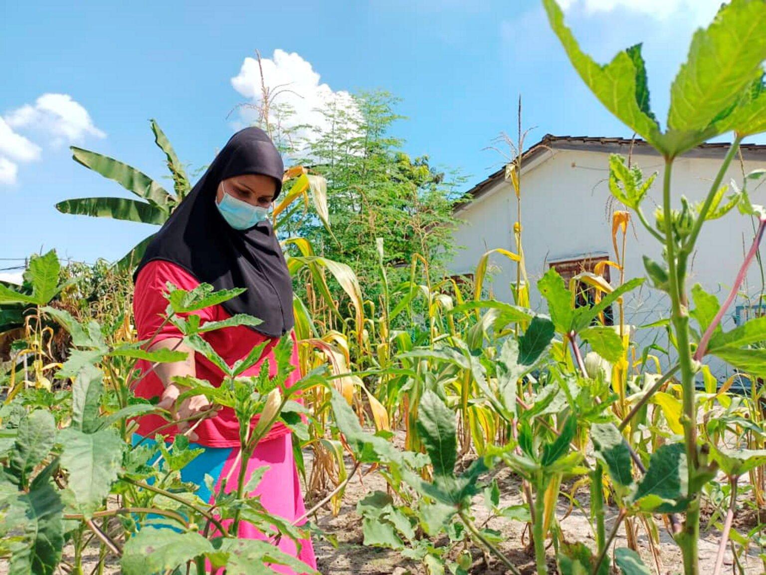 Ibu Tunggal Terpaksa Pinjam Wang Untuk Bayar Sewa Rumah
